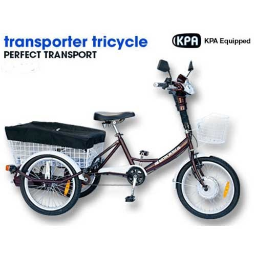 bca-electric-tricycle-1