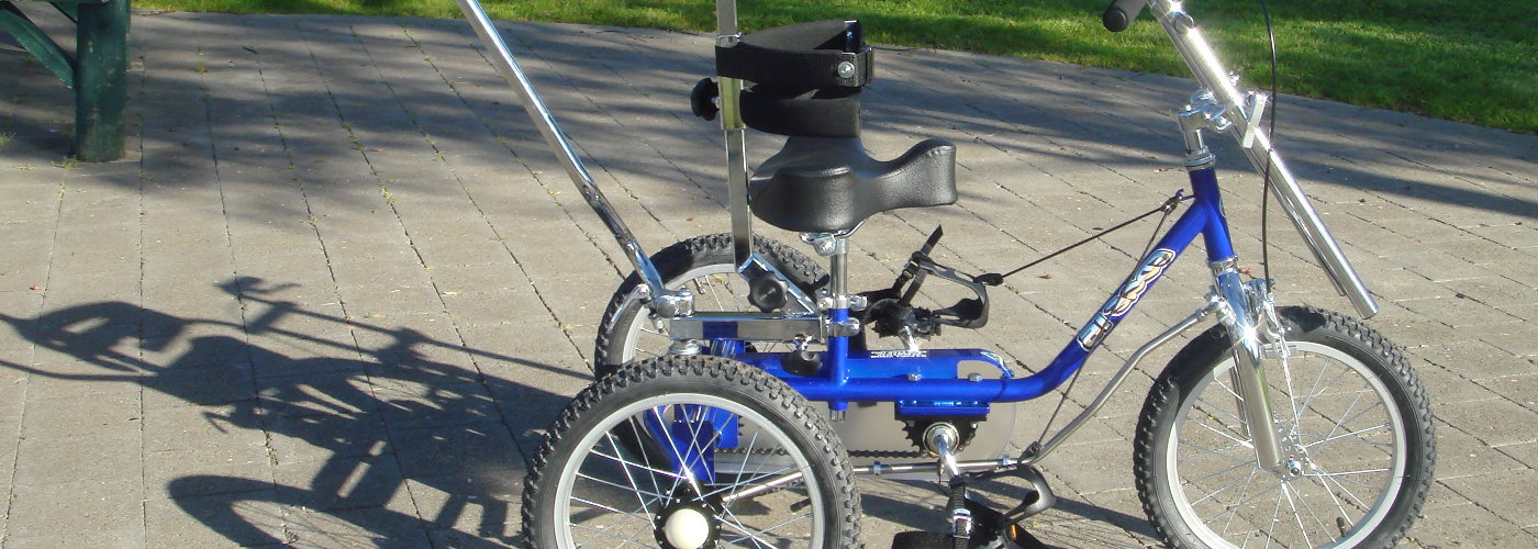 STANDARD THERAPEUTIC TRICYCLES
